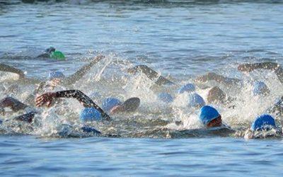 Open water zwemmen 2021